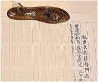 画像1: 観音経写経紙セット